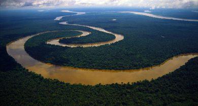 Amazon.River