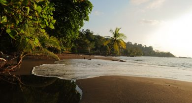 Corcovado-National-Park-Southern-Pacific-Costa-Rica