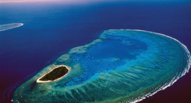 Lady-Musgrave-Island
