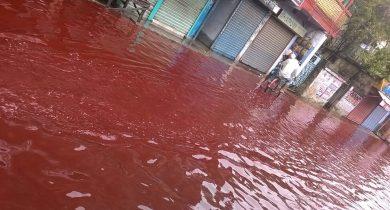 Red Rain in Kerala (India)