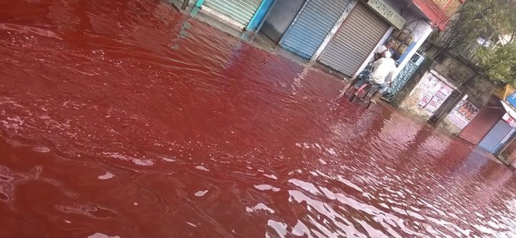 Image result for blood rain in kerala)