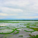 Loktak Fresh Water Lake - Manipur (India)